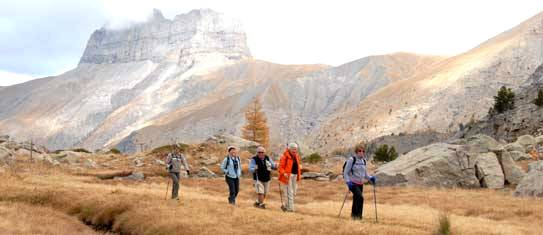Latest news walking holidays
