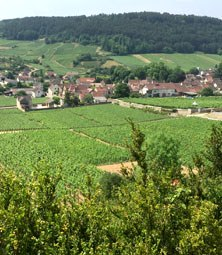 Active holiday Dordogne