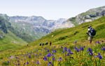 Discover the Pyrenees