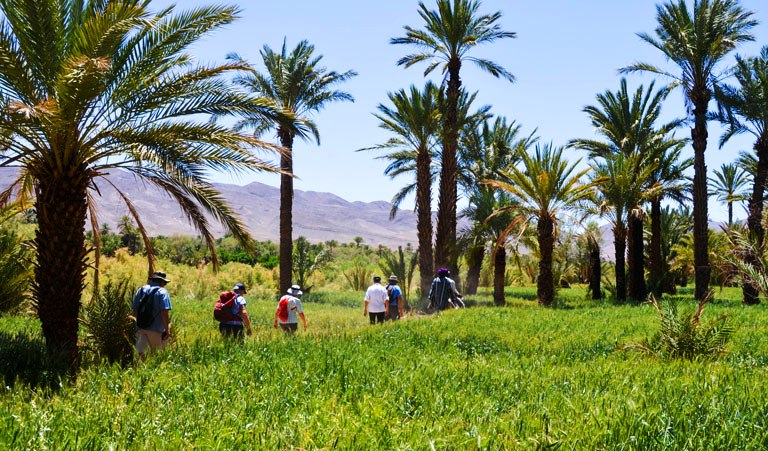guided walking Morocco