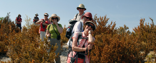 Guided Walking Holidays in Africa